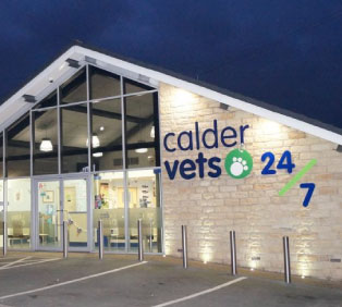 Calder Vets Case Study - Raybloc X-Ray Protection