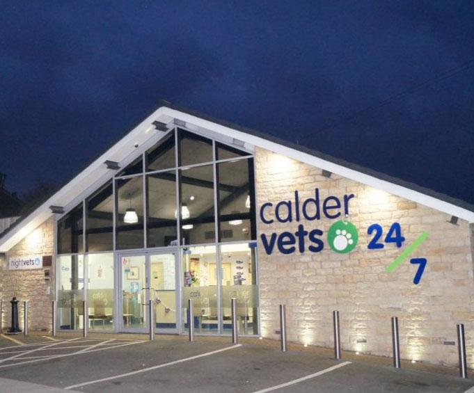 Calder Vets Case Study - Raybloc X-Ray Protection